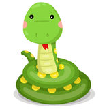 Illustrator of snake cute vector Royalty Free Stock Image