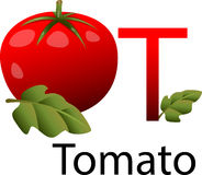 Illustrator T font with tomato Royalty Free Stock Image