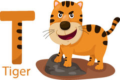 Illustrator of T with tiger Royalty Free Stock Photography