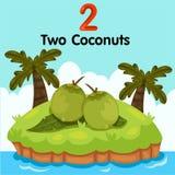 Illustrator van nummer twee kokosnoten Stock Afbeeldingen