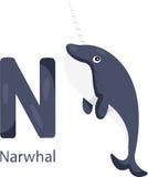 Illustrator von N mit Narwal Lizenzfreie Stockbilder