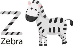 Illustrator von Z mit Zebra Stockfoto