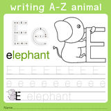 Illustrator of writing a-z animal e. Isolated for education Stock Photo