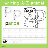 Illustrator of writing a-z animal p. Isolated for education vector illustration