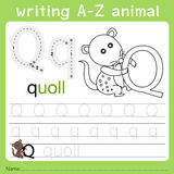 Illustrator of writing a-z animal q Royalty Free Stock Image