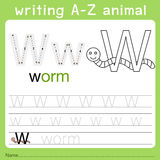 Illustrator of writing a-z animal w Royalty Free Stock Image