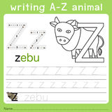 Illustrator of writing a-z animal z. Isolated for education royalty free illustration