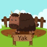 Illustrator of Yak in the zoo. Cute and education Royalty Free Stock Image