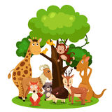 Illustrator of zoo animal. Isolated Royalty Free Stock Images