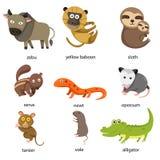 Illustrator of zoo animals Stock Image