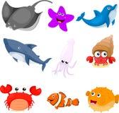 Illustratore degli animali di mare messi Illustrazione di Stock