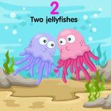 Illustratore del numero con due meduse Illustrazione di Stock