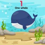 Illustratore del numero con una balena Illustrazione Vettoriale