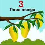 Illustratore del numero tre con il mango Immagine Stock