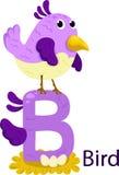 Illustratore della B con l'uccello Illustrazione Vettoriale