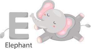 Illustratore della E con l'elefante illustrazione di stock