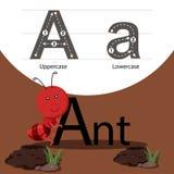 Illustratore della formica con una fonte Fotografia Stock Libera da Diritti