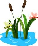 Illustratore della libellula Fotografie Stock