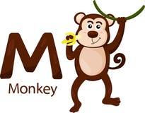 Illustratore della m. con la scimmia Illustrazione di Stock