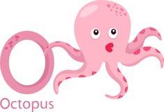 Illustratore della O con il polipo Illustrazione di Stock