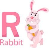 Illustratore della R con coniglio Illustrazione di Stock