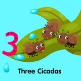 Illustratore delle cicale di numero tre Illustrazione di Stock