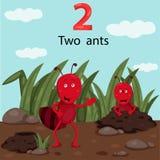 Illustratore delle formiche di numero due Illustrazione di Stock