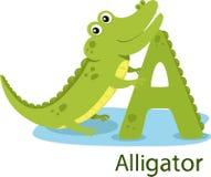 Illustratore di A con l'alligatore Royalty Illustrazione gratis