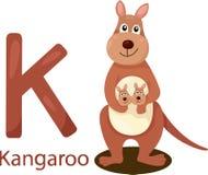 Illustratore di K con il canguro Royalty Illustrazione gratis
