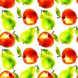 Illustrazione acquerella della frutta della pera e della mela Fotografia Stock Libera da Diritti