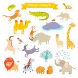 Illustrazione africana di vettore degli animali grande insieme di vettore Fotografia Stock Libera da Diritti