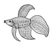 Illustrazione al tratto del pesce Immagine Stock Libera da Diritti