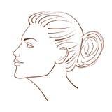 Illustrazione al tratto di bello fronte della donna dalla vista di profilo Immagini Stock Libere da Diritti