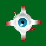Illustrazione anatomica di un occhio Fotografia Stock