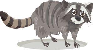Illustrazione animale del fumetto del procione Immagini Stock