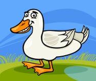 Illustrazione animale del fumetto dell'uccello dell'azienda agricola dell'anatra Fotografia Stock Libera da Diritti