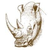 Illustrazione antica dell'incisione del rinoceronte Fotografia Stock Libera da Diritti