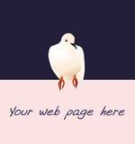 Illustrazione appollaiantesi della colomba Fotografie Stock Libere da Diritti