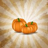 Illustrazione arancio di vettore del fondo della zucca Fotografie Stock Libere da Diritti