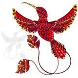 Illustrazione astratta del colibrì rosso, uccello e dipinto il suo profilo su fondo bianco, isolato Immagini Stock