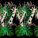 Illustrazione astratta dell'acquerello delle giraffe Fotografia Stock Libera da Diritti