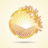 Illustrazione astratta di vettore di un giacimento di grano al tramonto Immagini Stock Libere da Diritti