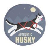 Illustrazione autentica del husky Immagini Stock Libere da Diritti