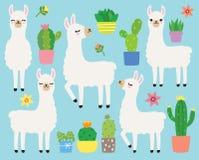 Illustrazione bianca di vettore dei cactus e dei lama illustrazione di stock