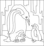 Illustrazione in bianco e nero dei pinguini per colorare Fotografia Stock