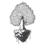 Illustrazione in bianco e nero di vettore di scarabocchio del fumetto di schizzo di vita dell'albero Immagini Stock Libere da Diritti