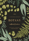 Illustrazione botanica con le foglie Immagini Stock