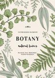 Illustrazione botanica con le foglie Fotografia Stock