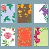 Illustrazione botanica ed estate naturali delle peonie di vettore del petalo del fumetto del mazzo del fiore floreale d'annata de illustrazione di stock