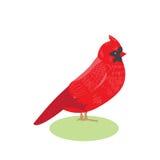 Illustrazione cardinale rossa di vettore dell'uccello di bello rosso dell'uccello Immagini Stock
